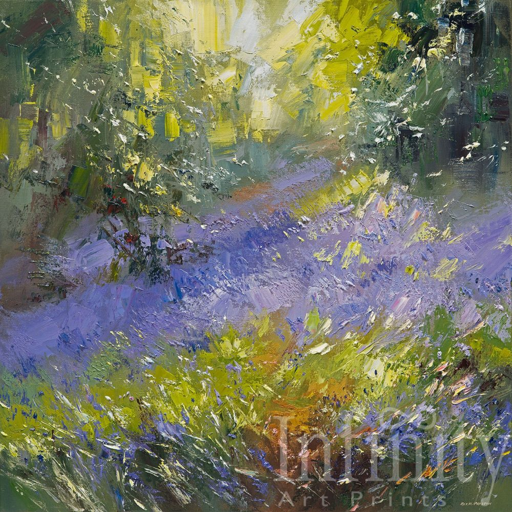 Bluebells, Shining Cliff Woods