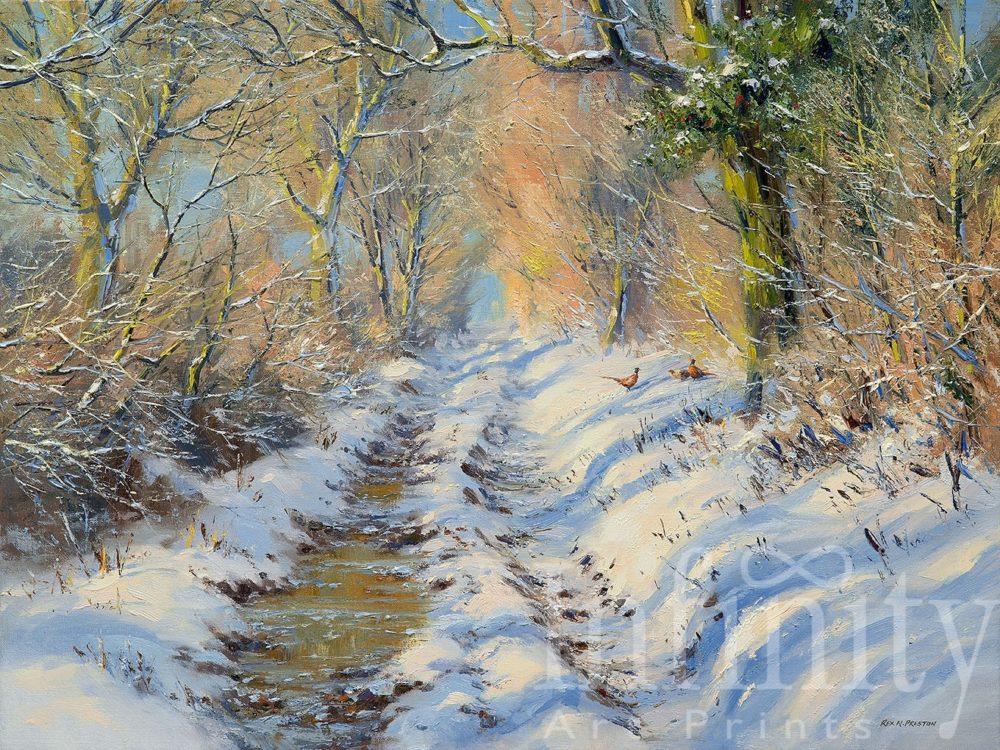 Sunlight Through the Trees, Brailsford