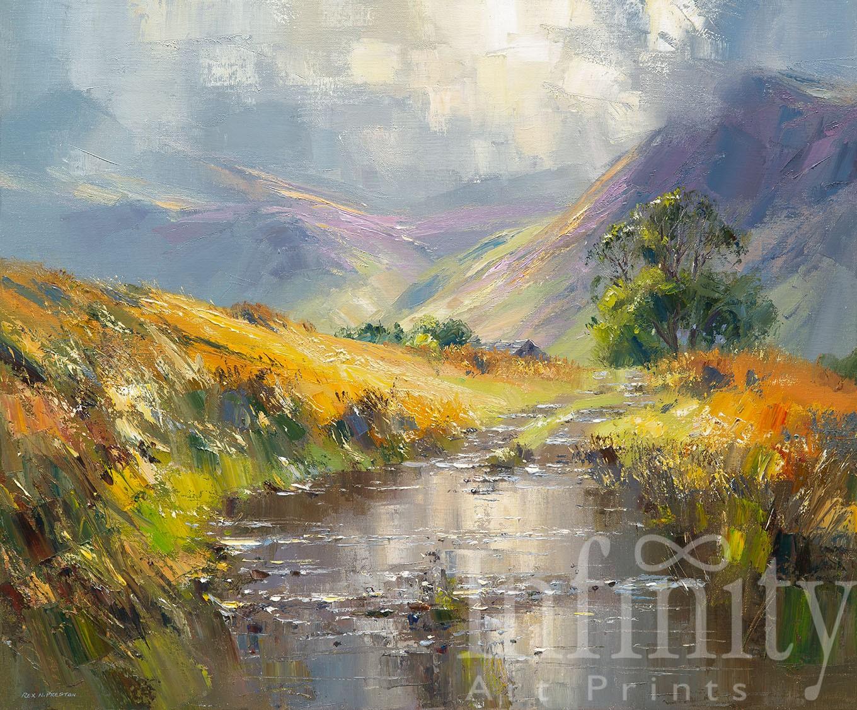 September Sunlight, near Lanthwaite, Lake District