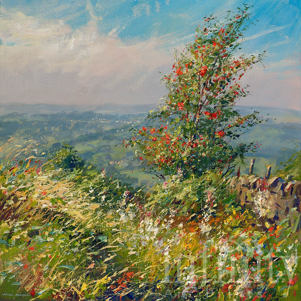 Rowan and Willowherb, Curbar Gap - Mark Preston