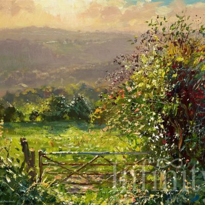 September Evening, Ashleyhay - Mark Preston