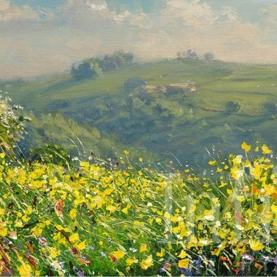 May Flowers, Bonsall Moor - Mark Preston