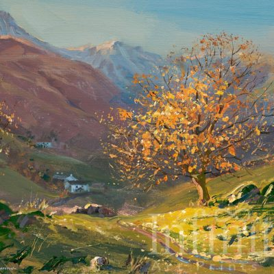 November Sunlight, Little Langdale - Mark Preston