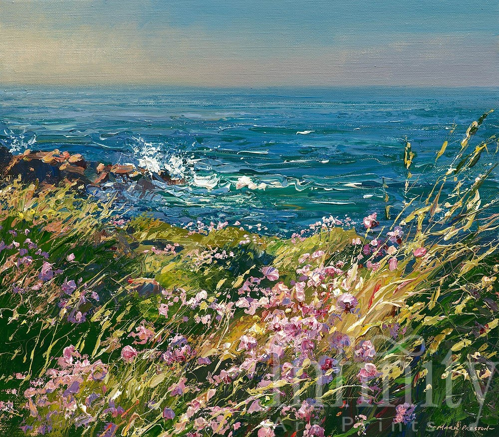 Sunlit Thrift, Clodgy Point, St. Ives - Mark Prestion