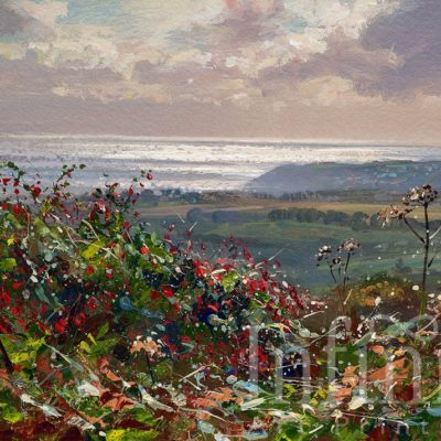 Silver Sea and Fuchsia, Penwith - Mark Preston