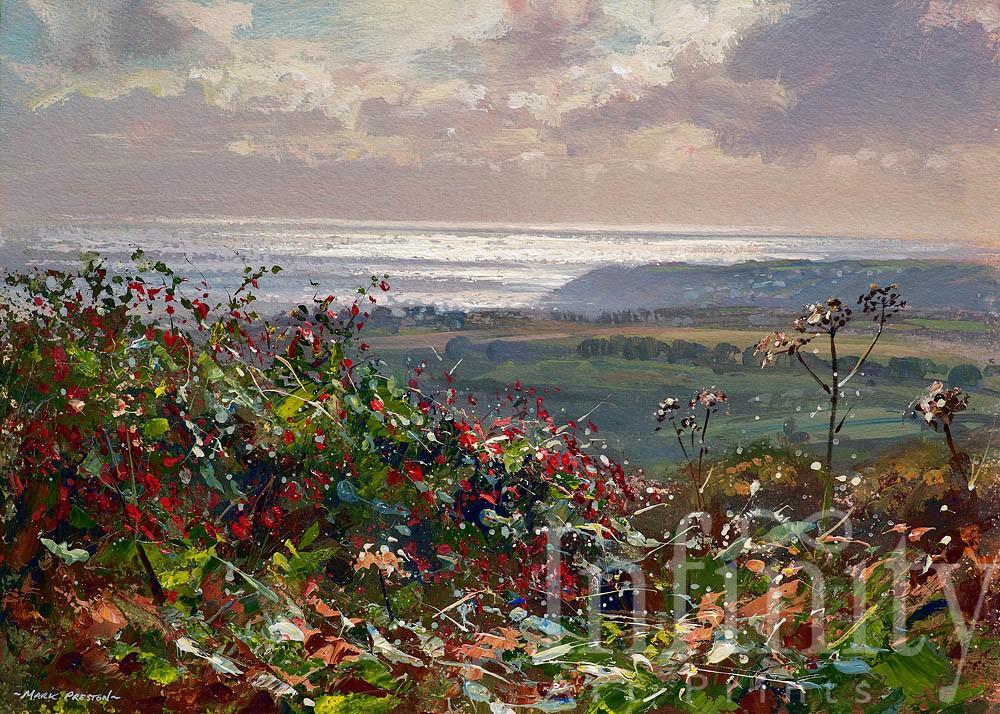 Silver Sea and Fuchsia, Penwith - Mark Preston